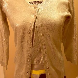NWOT ETCETERA gray/silver camisole and cardigan